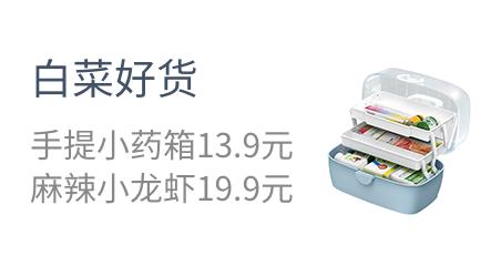 白菜好货  手提小药箱13.9元  麻辣小龙虾19.9元
