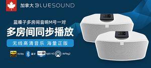BLUESOUND  PULSE MiNi 2i(藍嗓子 M號)  智能無線桌面對箱