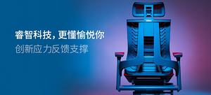 西昊 R1 人体工学椅