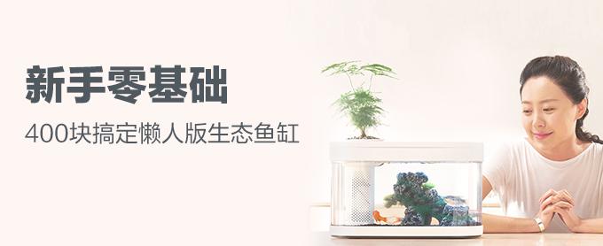 新手零基础  400块搞定懒人版生态鱼缸